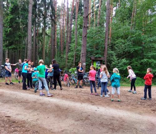 Schůzka v lese